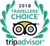 TripAdvisor Traveller's Choice 2018: Hotels with Best Service in Russia